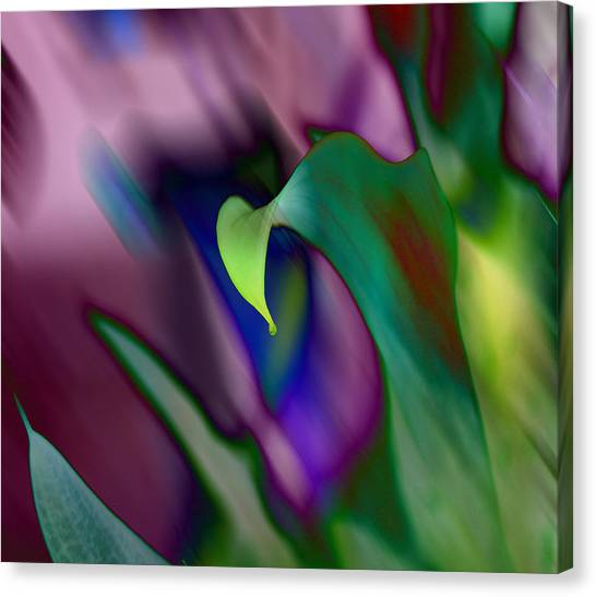 Canvas Print - Spring Colors 1 by Evelyn Patrick