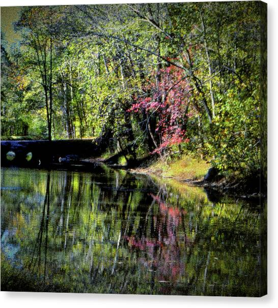 Canvas Print featuring the photograph Spring Colors by Samuel M Purvis III