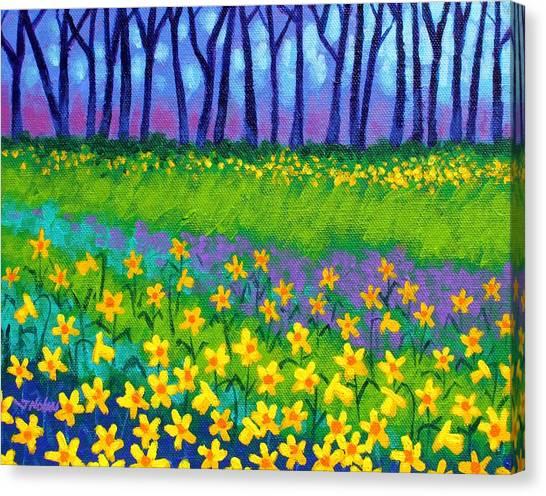 Daffodils Canvas Print - Spring Daffodils by John  Nolan