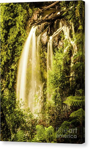 Philosopher Canvas Print - Spring Falls by Jorgo Photography - Wall Art Gallery