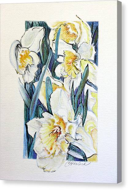 Spring Frills Canvas Print by Carole Haslock