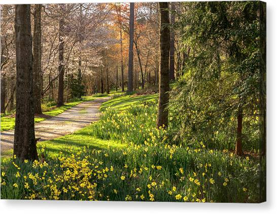 Spring Garden Path Canvas Print