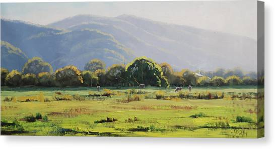 Beautiful Nature Canvas Print - Spring Grazing Tumut Australia by Graham Gercken