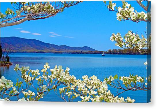 Spring Has Sprung 2 Smith Mountain Lake Canvas Print