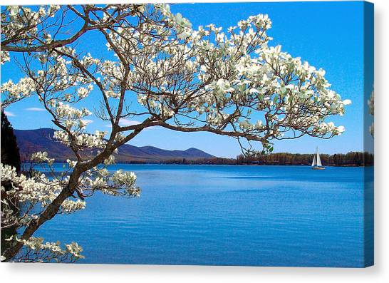 Spring Has Sprung Smith Mountain Lake Canvas Print