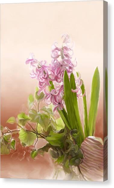 Spring Hyacinth Canvas Print