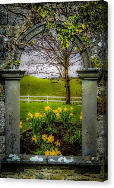Canvas Print featuring the photograph  Spring In Ballynacally, County Clare by James Truett