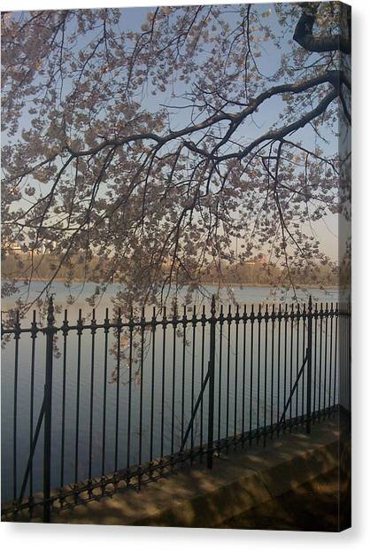 Spring In New York City Canvas Print by Wendy Uvino