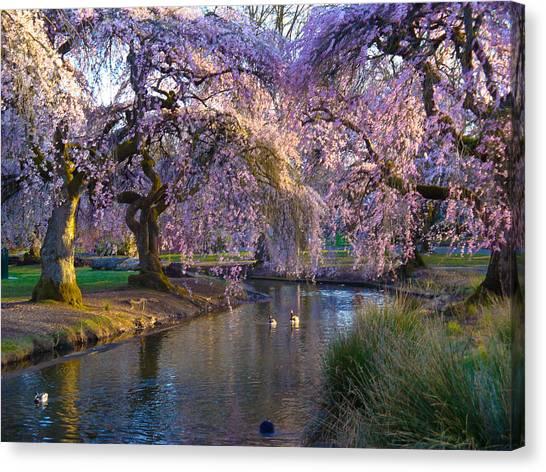 Spring In Portland Canvas Print