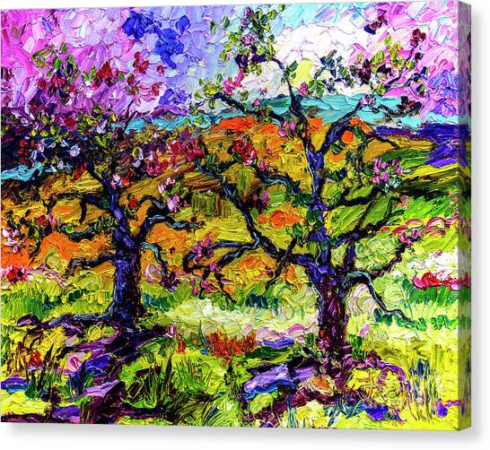 Spring In Provence Pink Blossom Trees Canvas Print