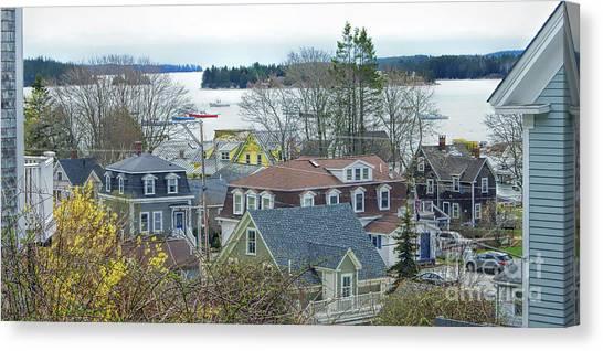 Spring In Maine, Stonington Canvas Print