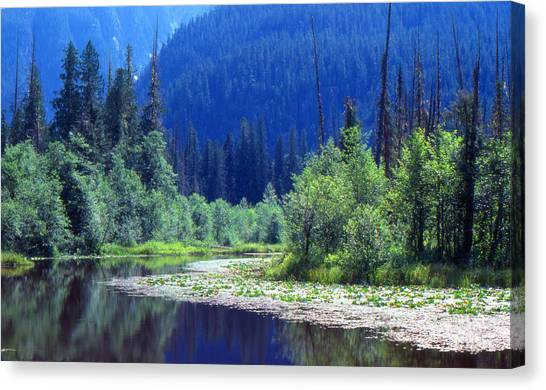 Spring In The Mountains 3  Canvas Print by Lyle Crump