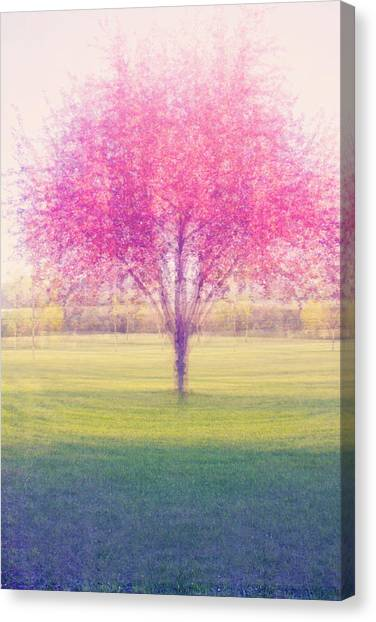 Spring Is A Blur Canvas Print