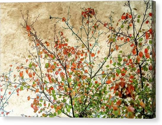 Autumn Leaves Canvas Print - Spring Is Gone by Az Jackson