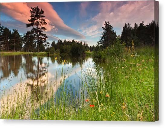 Lake Sunsets Canvas Print - Spring Lake by Evgeni Dinev