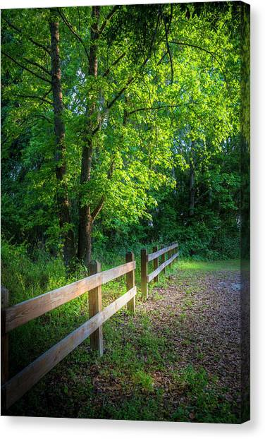 Saws Canvas Print - Spring Leaves by Marvin Spates
