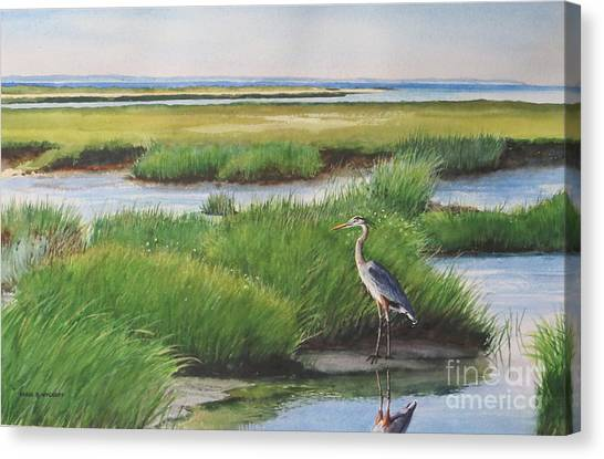 Spring Marsh Canvas Print by Karol Wyckoff