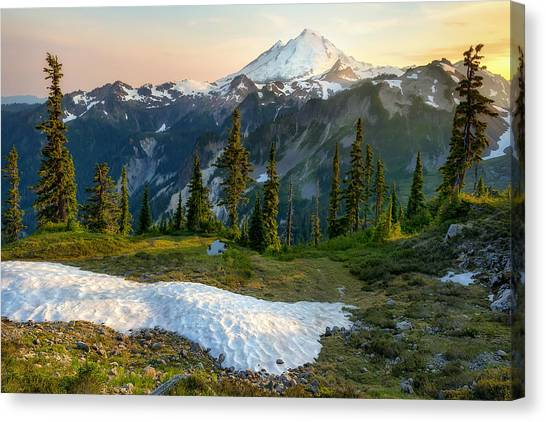 Spring Melt Canvas Print