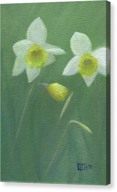 Spring Morning Canvas Print by Laurel Ellis