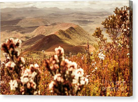 Awesome Canvas Print - Spring Mountain Blossoms by Jorgo Photography - Wall Art Gallery