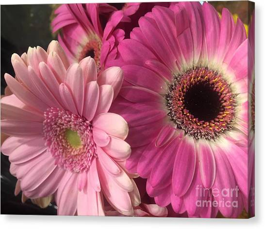 Spring N Winter Canvas Print
