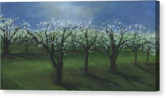 Spring Orchard Canvas Print