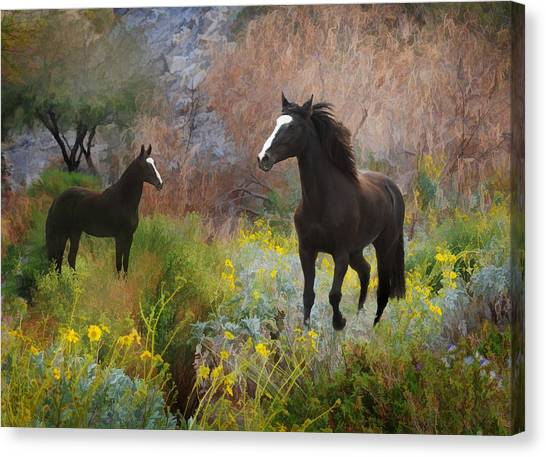 Canvas Print featuring the photograph Spring Play by Melinda Hughes-Berland
