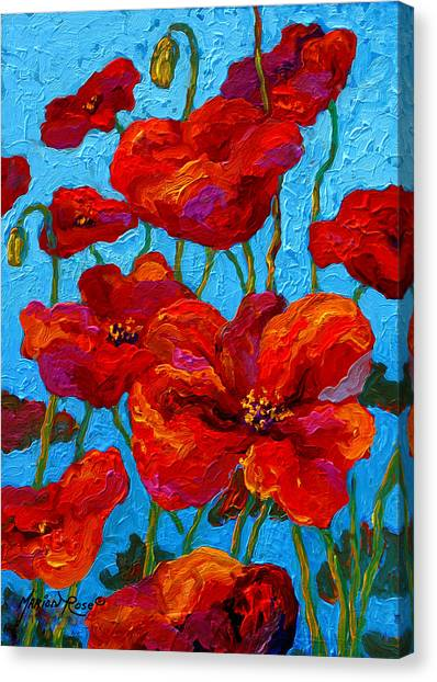 Spring Canvas Print - Spring Poppies by Marion Rose