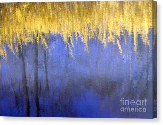 Spring Reflections Canvas Print