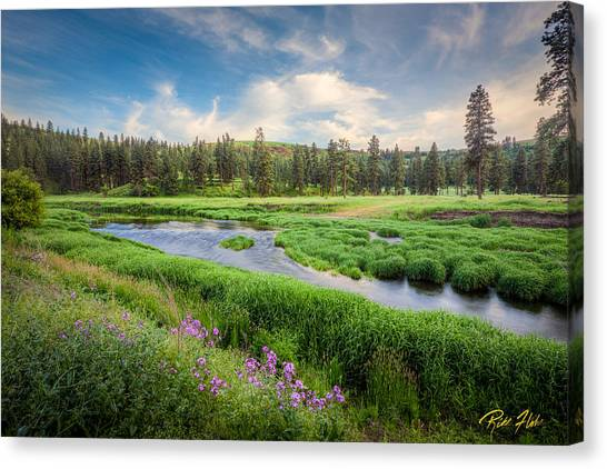 Spring River Valley Canvas Print