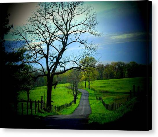 Spring Road Canvas Print by Michael L Kimble