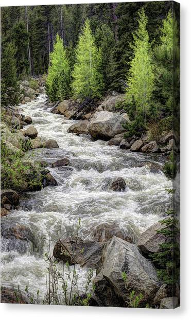 Spring Runoff Canvas Print by G Wigler