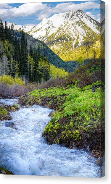 Snow Melt Canvas Print - Spring Snow Melt Wasatch Mountains Utah by Utah Images