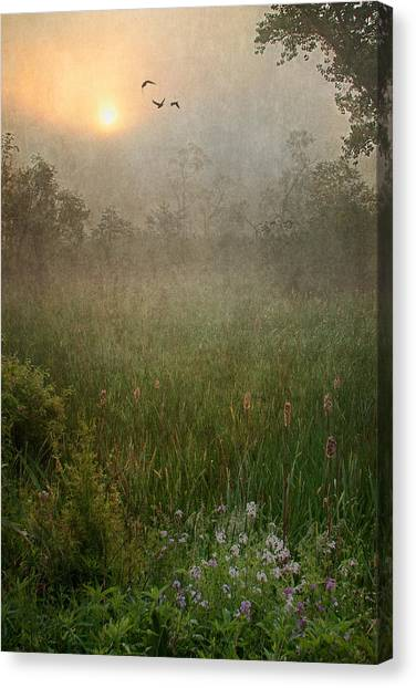 Spring Sunrise In The Valley Canvas Print