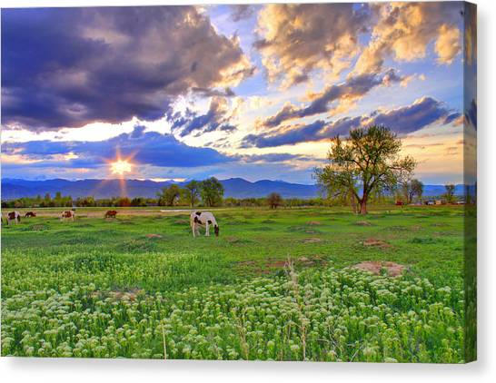 Spring Sunset Over The Rockies Canvas Print
