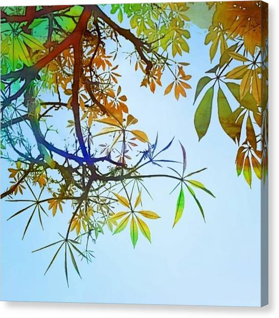 Watercolor Canvas Print - #spring #tree #leaves With #watercolor by Shari Warren