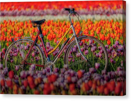 Canvas Print featuring the photograph Spring Tulips And Bicycle by Susan Candelario