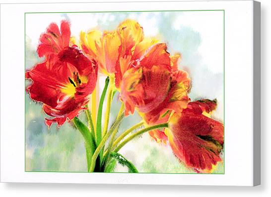 Spring Tulips Canvas Print by Margaret Hood