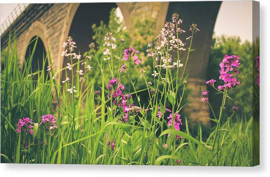Canvas Print featuring the photograph Spring Under The Arches by Viviana  Nadowski