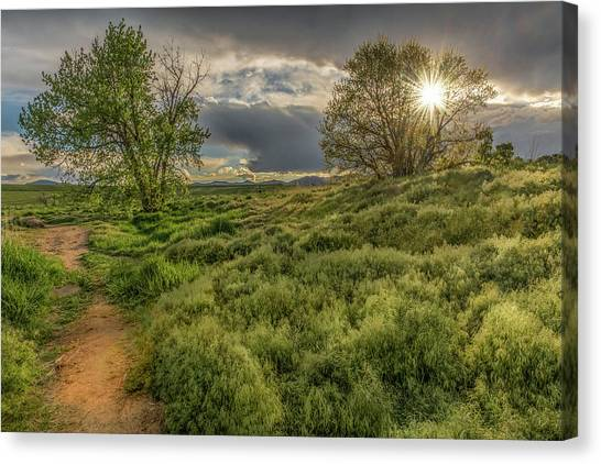 Spring Utopia Canvas Print