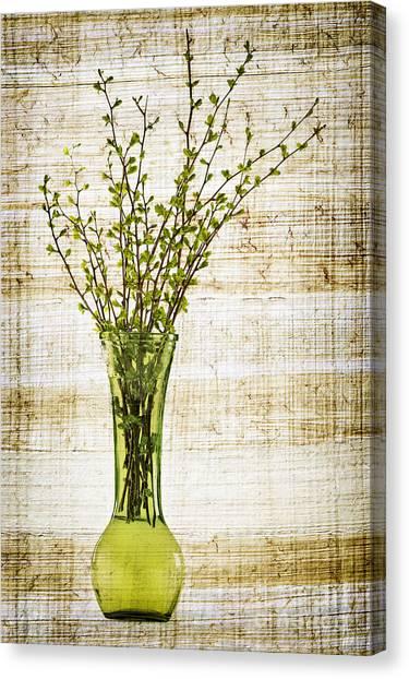 Rebirth Canvas Print - Spring Vase by Elena Elisseeva