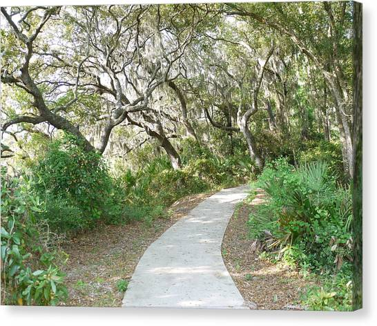 Spring Walkway Canvas Print by Bea Godwin