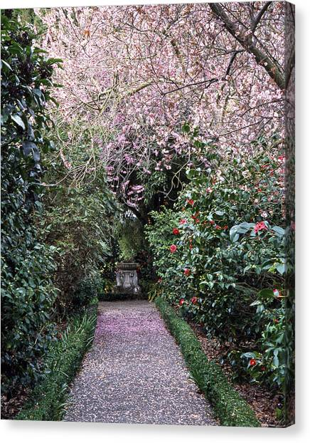 Spring Walkway Canvas Print by Geoff Bryant