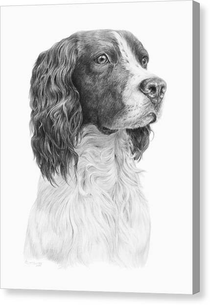 Springer Canvas Print