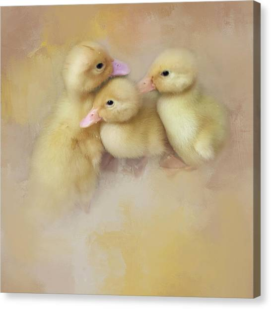 Springtime Babies Canvas Print