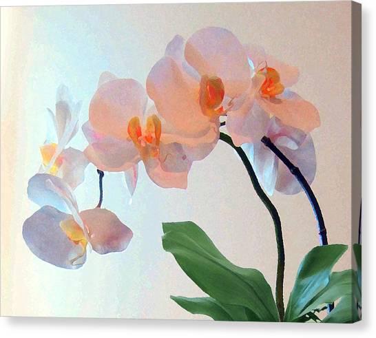 Springtime Delight 2 Canvas Print