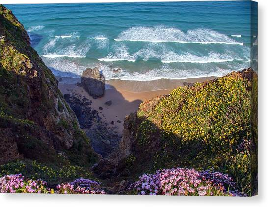 Springtime In Cornwall Canvas Print