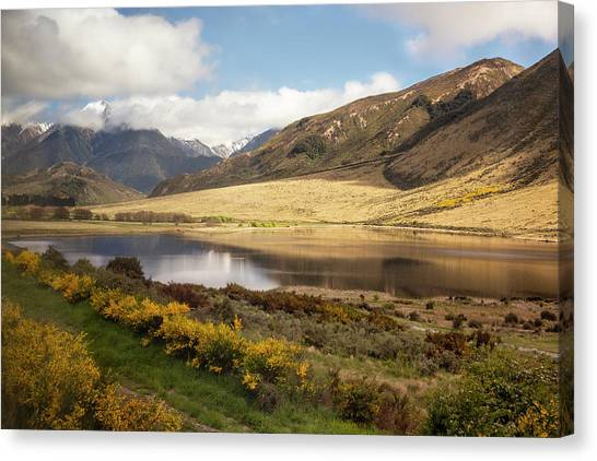 Springtime In New Zealand Canvas Print