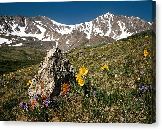 Springtime In The Rockies Canvas Print