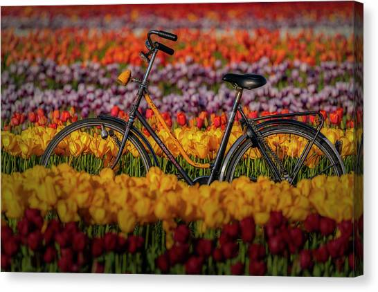 Canvas Print featuring the photograph Springtime Tulips And Bike by Susan Candelario